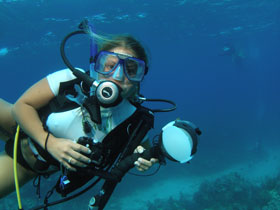 underwater photography instruction in the Florida keys