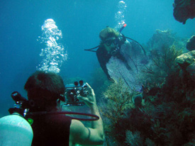 an underwater photographer capturing the decisive moment!